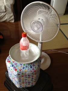 fan and ice