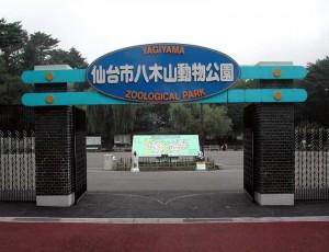 yagiyama zoo